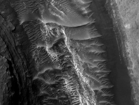 These dunes and ripples share a valley with an anceint, infilled channel on the mound of sediment in Gale Crater, near the end of the proposed MSL traverse. They are especially striking because they are made of dark volcanic sand, mixed with light-toned sand from the sediments filling the channel.